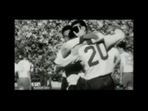 Сборная Бразилии по футболу на чемпионате мира 1958 года