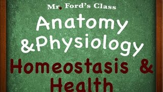 Introduction To Anatomy Physiology : Homeostasis & Health