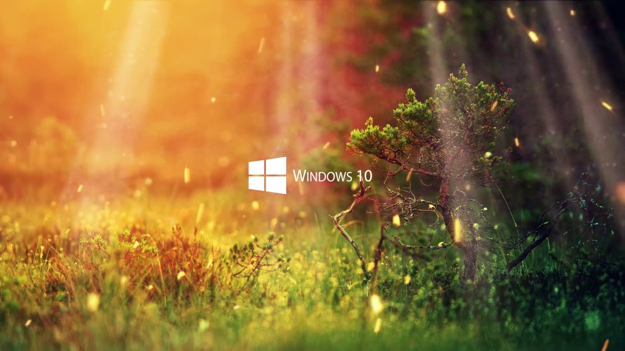 Windows 10 Series