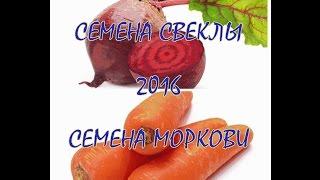 Семена МОРКОВИ и семена СВЕКЛЫ 2016!