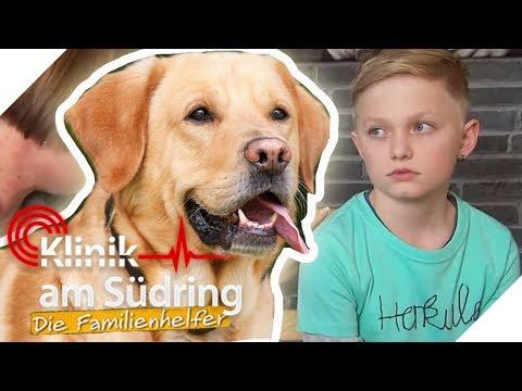 Will Paul ein Hund sein? Der Schüler will heißen wie das Haustier! | Die Familienhelfer | SAT.1