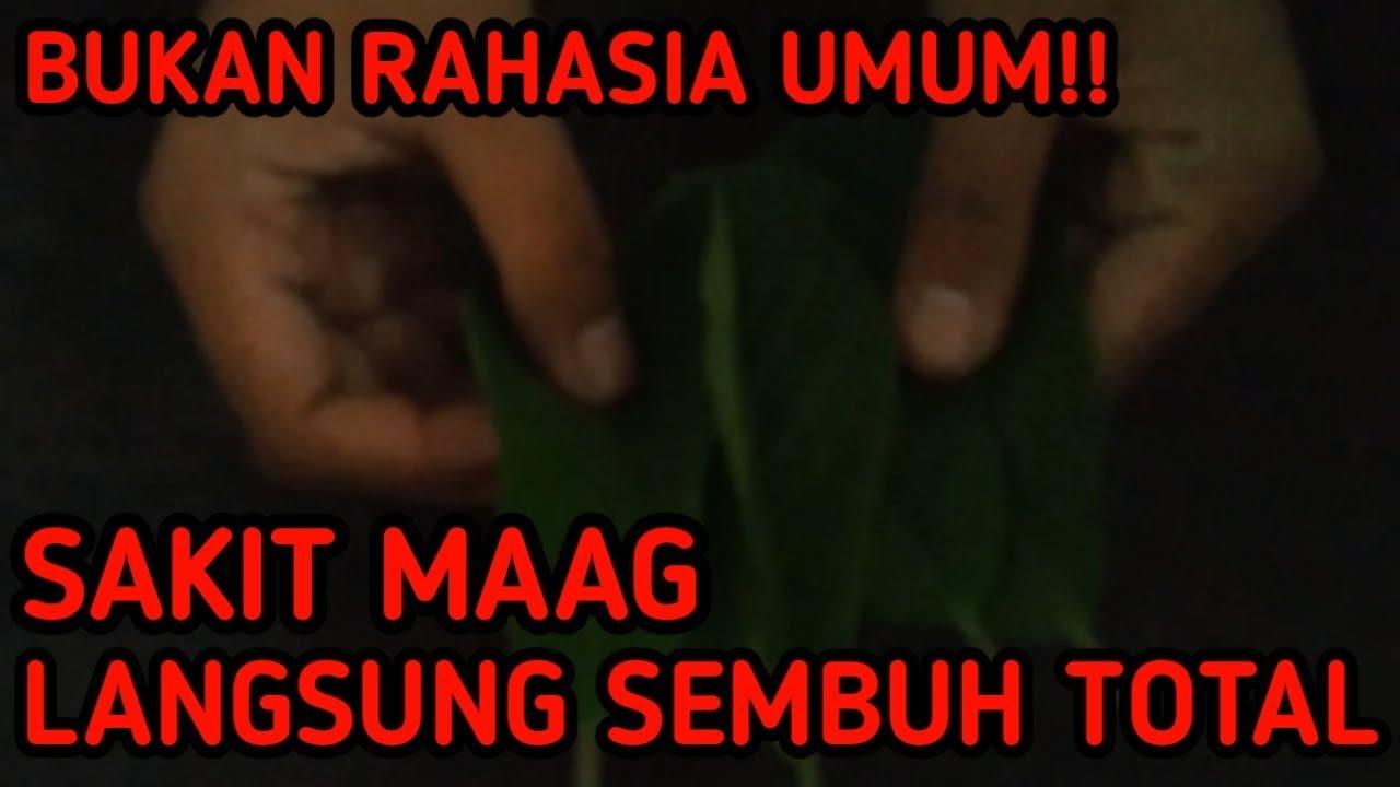 BUKAN RAHASIA UMUM!!! SAKIT MAAG SEMBUH DENGAN CEPAT ...