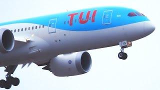 NEW LOOK | Thomson Airways B787-8 Landing Helsinki | New TUI Titles | G-TUIG