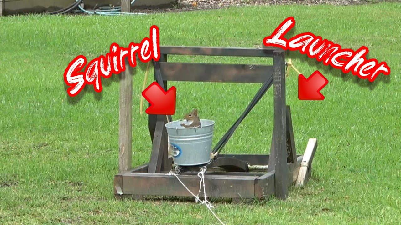 Squirrel Launching / Squirrel Catapult - Slow Motion Squirrel Flights :-)