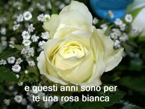 My Choice 189 Andreas Una Rosa Bianca Youtube