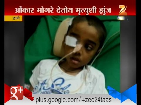 Thane | Omkar Alankar Mogre | Fighting With Death | Need Financial Help For Operation