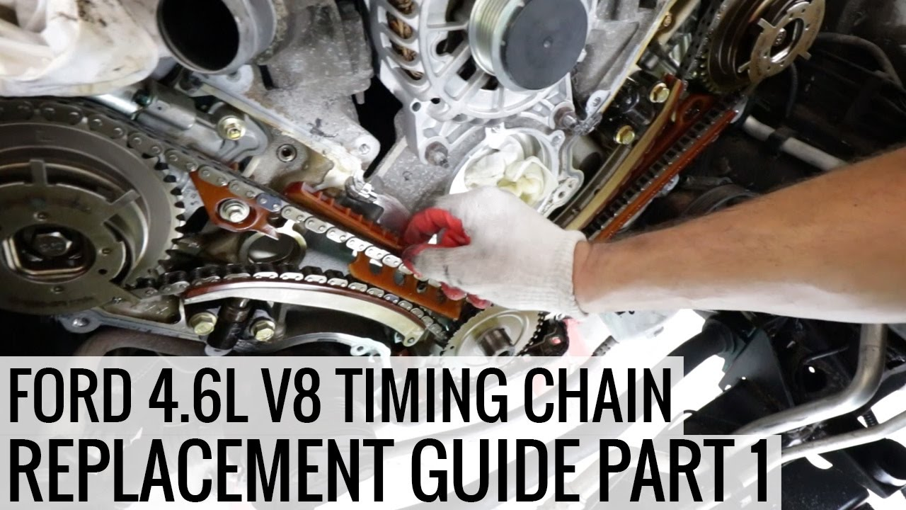 how to replace the timing chain 4 6l ford v8 pt 1 - project mullet mustang  - ep04