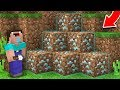 Minecraft NOOB vs PRO : NOOB DIGGING SECRET MINE AND FOUND THIS DIAMONDS IN DIRT! (Animation)