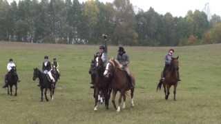 Hubertus 2013 gonitwa 2