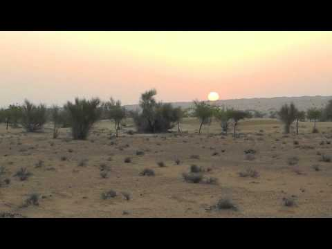 Sunrise over the expedition base camp in the Dubai Desert Conservation Reserve