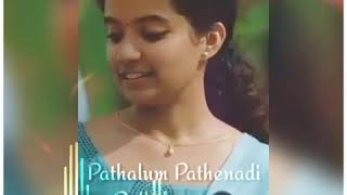 Pathalum Pathenadi pullerenguma song    whatsapp status videos