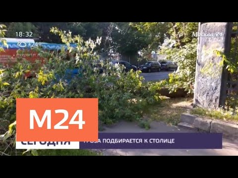 На Москву надвигается гроза - Москва 24
