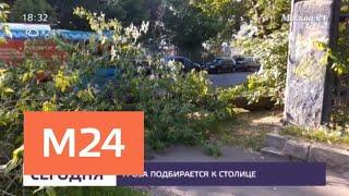 Смотреть видео На Москву надвигается гроза - Москва 24 онлайн