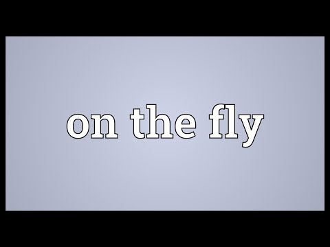 On the fly Meaning