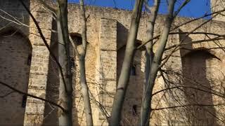 Balade hivernale à Chevreuse Yvelines