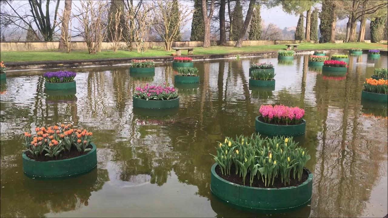 Laghetto aiuole t laghetto aiuole e giardino for Bordure per laghetti