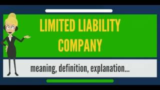 What is LIMITED LIABILITY COMPANY? What does LIMITED LIABILITY COMPANY mean?