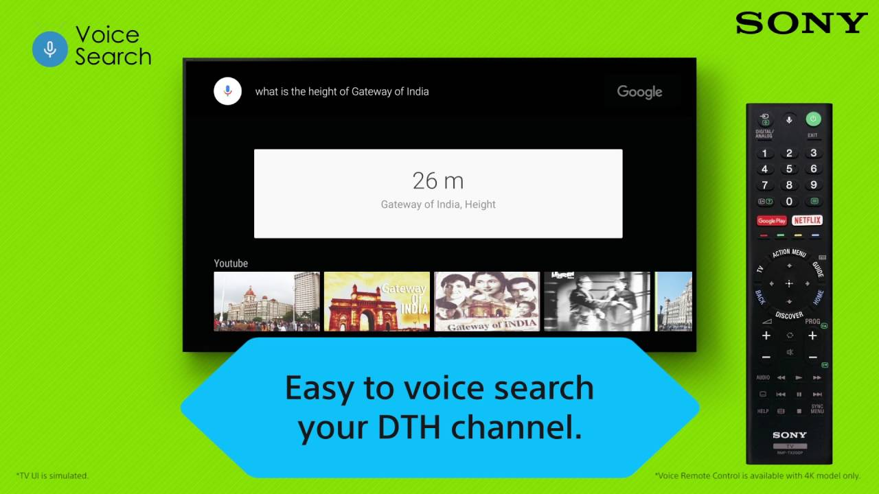 SONY Android TV : Voice Search