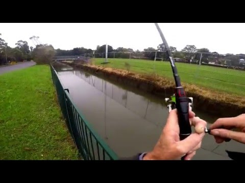Fishing Sydney's drains with rubber vibes