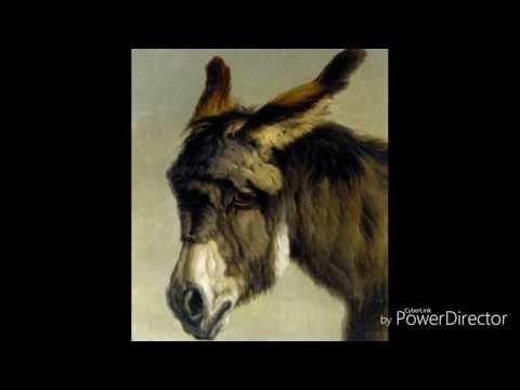 J'aime l'âne si doux - Francis Jammes / Audrey Gambassi / Lionel Mazari