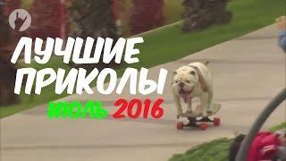 ЛУЧШИЕ ПРИКОЛЫ 2016 ИЮЛЬ | Лучшая подборка приколов | Самое смешное видео