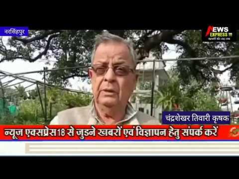 नरसिंहपुर के किसान को प्रधानमंत्री नरेंद्र मोदी देंगे कृषि कर्मठ अवार्ड