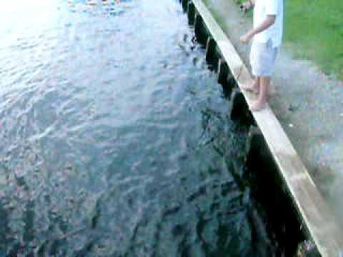 Crabbing at Little Washington NC
