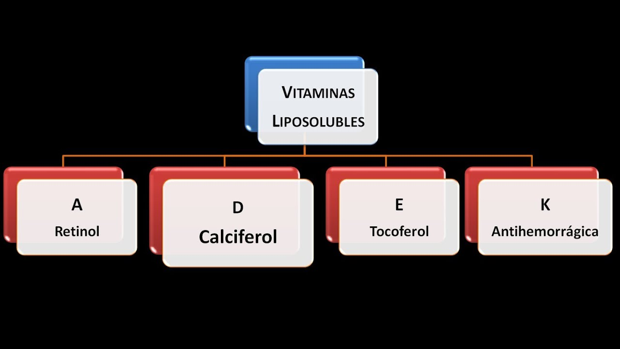 Vitaminas liposolubles: Vitamina D - YouTube