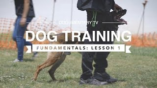 DOG TRAINING FUNDAMENTALS: LESSON 1
