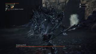Bloodborne - Darkbeast Paarl | ShotStorm