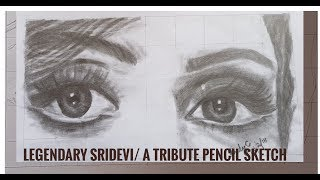 Legendary Sridevi A Tribute In Pencil Sketch