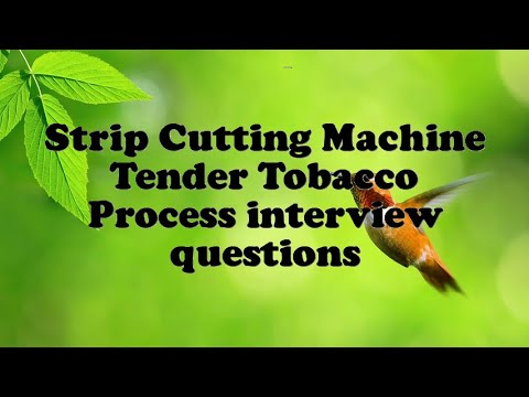 Strip Cutting Machine Tender Tobacco Process interview questions