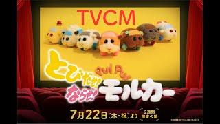 『とびだせ!ならせ! PUI PUI モルカー』TVCM【7月22日(木・祝)公開】
