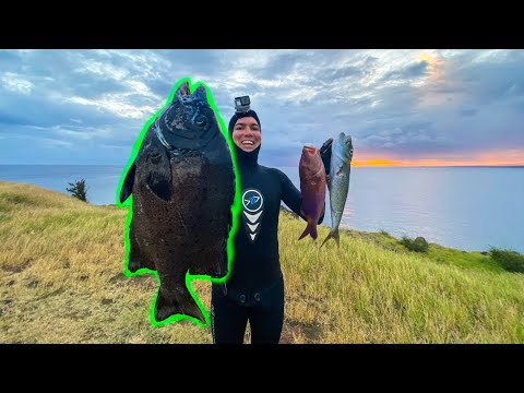 Spearfishing Hawaii Knife Jaw Catch And Cook + Sashimi Taste Test