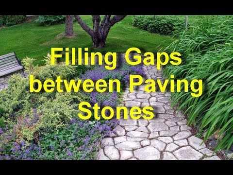 Filling Gaps Between Paving Stones