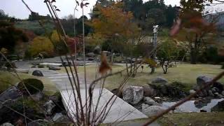 奈良県明日香村へ古代の見学に行ってきました。良かったですよ。日本の...