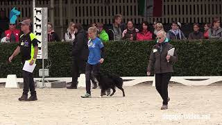 Selection - Valentina Balli + Mind the dog Lycan/Border Collie - Italy