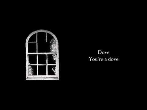 Antihoney - Dove [lyrics]