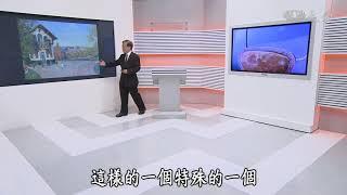 【大愛醫生館】20180822 - 藏鏡人 甲狀腺癌