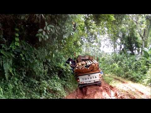 4 X 4 adventure to farm in Cameroon - during the Rainy Season
