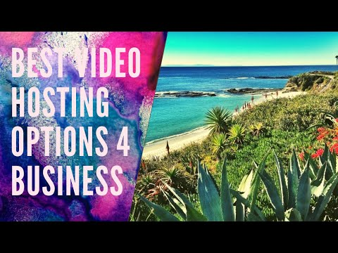 Best Video Hosting Options for Business