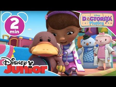 Doctorița Plușica - Orașul Plușicăi are nevoie de un Primar. Doar la Disney Junior!
