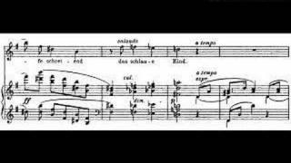 Amor by Richard Strauss, Elizabeth Parcells