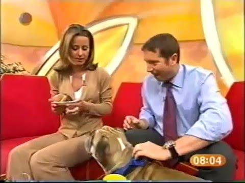 Sat 1 Frühstücksfernsehen Live