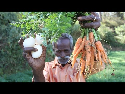 Farm Fresh CARROT with  EGG Prepared by My Daddy in my village / Village food factory