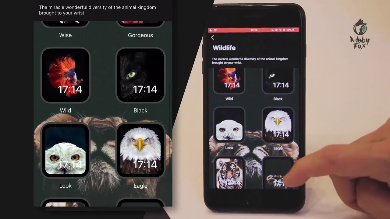 MobyFace App - Download now! – MobyFox