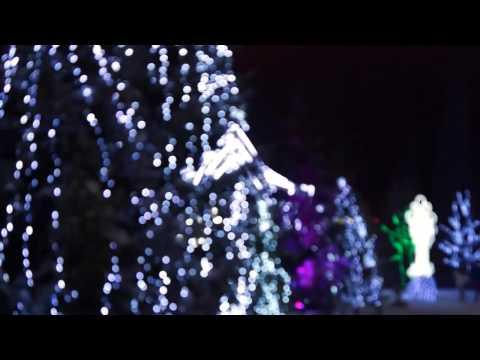 Новогодняя елка 2015 Нижнекамск