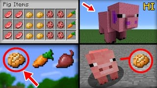 minecraft 20 things you didn t know about the pig