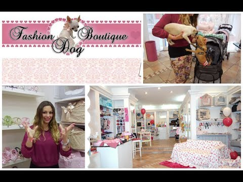 "Scopriamo ""Fashion Dog Boutique"""