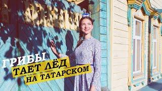 Грибы - Между нами тает лед (На татарском) (Cover by Аделя Ахметова)